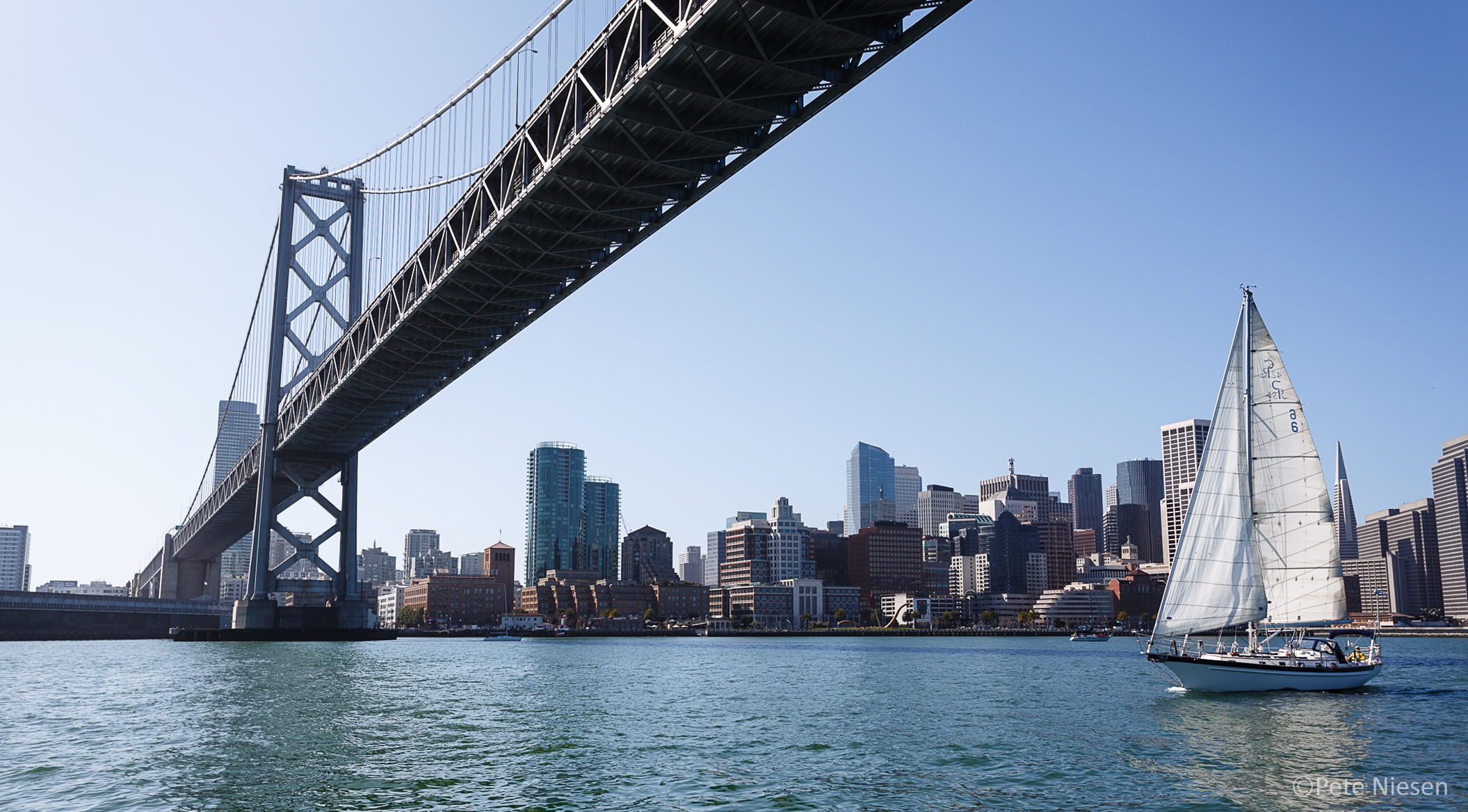 Sailing under the Bay Bridge while on a skippered charter with Modern Sailing School & Club