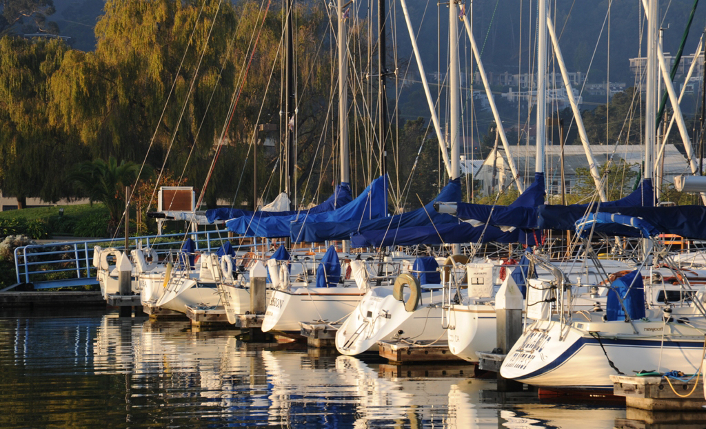 The Silver Fleet at Modern Sailing School and Club in Sausalito, California