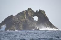 The Farallones Islands.  Spend a day sailing out the Golden Gate and to the Farallon Islands with Modern Sailing School and Club